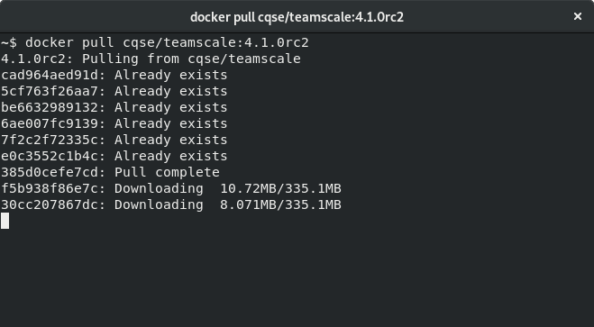 Running Docker pull on the console
